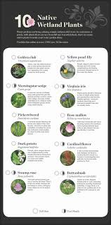 Names And Images Of Flowers - national garden native plant recommendations united states