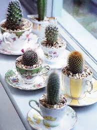 cactus home decor home decorating with cacti and handmade cactus home decorations