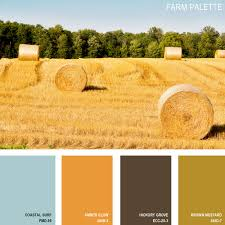 Beautiful Color Combinations 11 Beautiful Color Palettes Inspired By Nature Behr Amber And