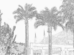 palm trees minarets kemer turkey coloring pages printable u0026 free