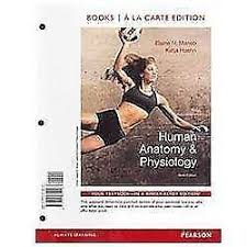 Best Anatomy And Physiology Textbook Anatomy And Physiology Textbooks Education Ebay