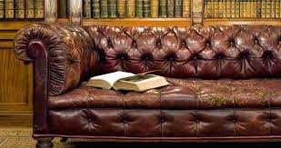 Leather Sofa Cushions Sofa Magnificent Conditioner For Leather Sofa Couch Cushions