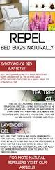 Can Bed Bugs Live In Water Repel Bed Bugs Naturally Living Wellmindness