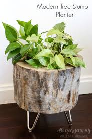 How To Make A Wood Stump End Table modern tree stump planter stacy risenmay