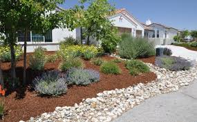 In Front Yard - front yard landscape ideas