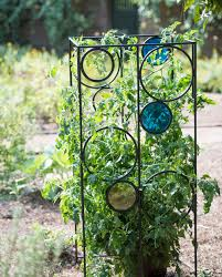 Climbing Plant Supports - trellis guide how to choose the best supports for climbing plants