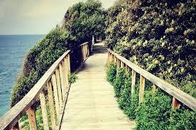 Walk In The Park Beach House Lyrics - 26 sydney walks that will take your breath away