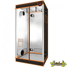 chambre de culture indoor superbox v 2 125x62x180 superbox 159 00 culture indoor