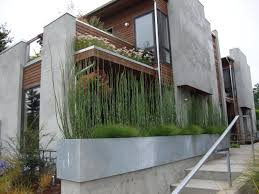 planter box ideas landscaping pool modern with wood potted plant