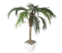 artificial 5ft pygmy date palm tree faux palm tree palm