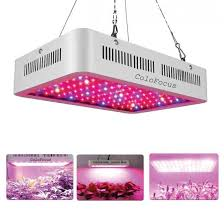 grow lights for indoor herb garden tips on how to grow herbs with grow lights a beginner s guide