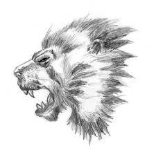 just a lion sketch by danielrsimoes on deviantart