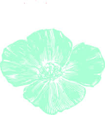 mint flowers mint poppy clip at clker vector clip online royalty