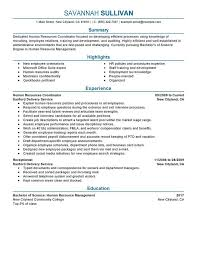Project Coordinator Resume Examples Hr Coordinator Job Description Human Resources Manager Resume