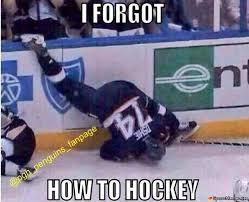 Nhl Meme - hockey fail meme
