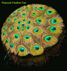 amazing interior room decoration idea with lavish peacock crafts interior amazing interior room decoration idea with lavish peacock crafts made of feather in yellow
