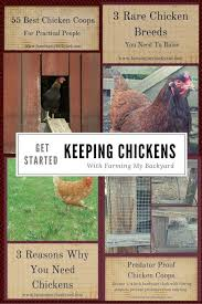 Can I Raise Chickens In My Backyard 7016 Best Women And Fishing Images On Pinterest Raising Chickens