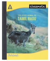 classmate books price classmate notebook single line ruling 92 pages online in india