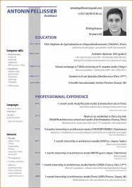Resume Format Event Management Jobs by Curriculum Vitae Vitae Para Word Event Planning Template Curiculum