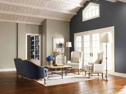 ideas for painting living room home design