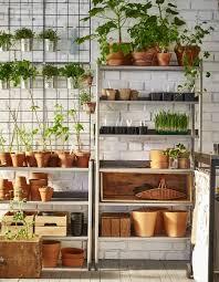 scaffale da esterno organizza gli attrezzi da giardino con scaffali da esterno per i