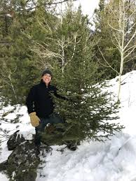 hunting for the perfect christmas tree outdoors