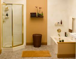 Decorating A Bathroom by Bathroom Remodel Contractors Tub To Shower Conversion Eco Bath