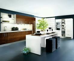 Different Kitchen Designs by Kitchen 51 Modern Kitchen Design And This Ultra Modern Kitchen