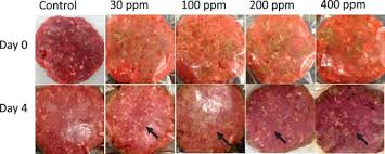 lairage cuisine led evaluation of chlorine dioxide acidified sodium chlorite and