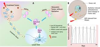 smart radiation therapy biomaterials sciencedirect