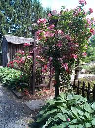 Home Garden Design Tips by Modern Makeover And Decorations Ideas Rose Garden Design Tips