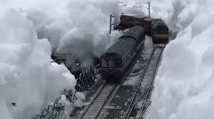 Winter Garden Drivers License Train 2k51 View Two Model Train Crossing Garden Railway In