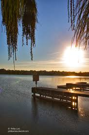 Florida lakes images Florida lakes phillip 39 s natural world jpg