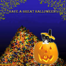 funny halloween wallpapers wallpapersafari