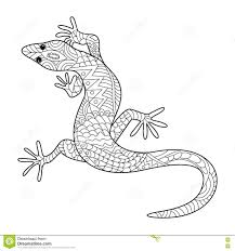 lizard coloring book for adults vector stock vector image 72694010