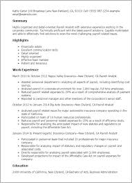 Resume Communication Skills Sample by Professional Payroll Analyst Templates To Showcase Your Talent