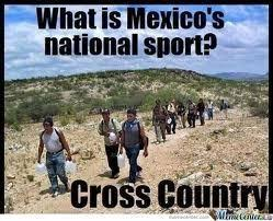 Funny Racist Mexican Memes - 201 best mexican be like images on pinterest humor mexicano