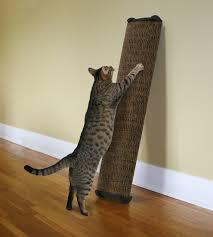 modern scratching post ideal but simple diy cat scratch post home decor u0026 furniture