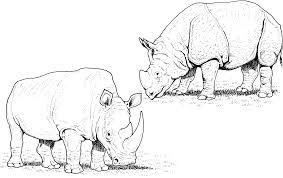 free indian coloring pages rhino coloring pages free archives best coloring page