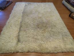 Shaggy Rug Cleaner Rug Master August 2014