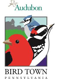 100 types of backyard birds amazon com wagner u0027s 76029