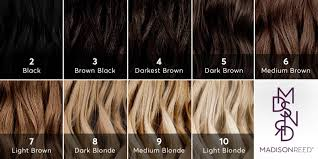 how do i the right color for my kitchen cabinets what level is my hair find your hair color level with this