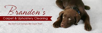 Md Upholstery Carpet Cleaning Baltimore Md Brandon U0027s Carpet U0026 Upholstery