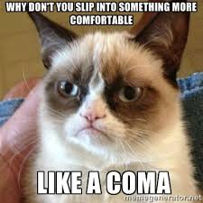 Grumpy Cat Coma Meme - grumpy cat why don t you slip into something more comfortable