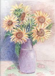 Pencil Sketch Of Flower Vase Drawn Sunflower Sunflower Vase Pencil And In Color Drawn
