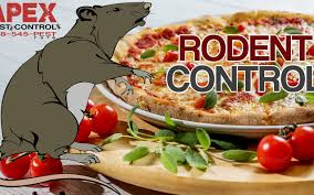rat cuisine the importance of a rodent program