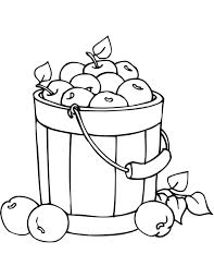 apples in bucket coloring page fruits drawings of apples