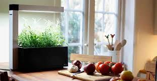 potager pour cuisine herbie le mini potager d intérieur gardens