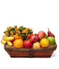 beautiful kalanchoe and bountiful fruit basket at from you flowers