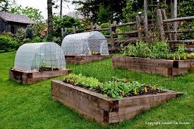 best raised bed vegetable garden layout garden design ideas